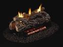 """Picture of 24"""" Golden Oak Designer See-Thru Vent Free Log Set"""